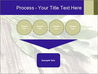 Aromatic Herb PowerPoint Template - Slide 93