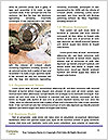 0000091156 Word Template - Page 4