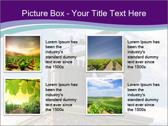 Wine Making Process PowerPoint Template - Slide 14