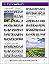 0000091157 Word Template - Page 3