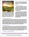 0000091157 Word Template - Page 4