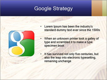 Chinese Noodles PowerPoint Templates - Slide 10