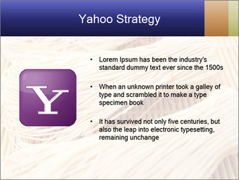 Chinese Noodles PowerPoint Templates - Slide 11