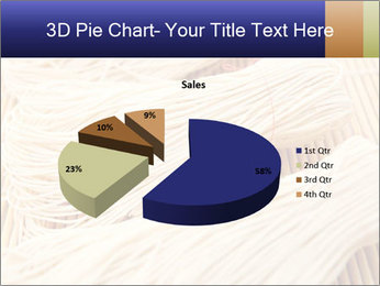 Chinese Noodles PowerPoint Templates - Slide 35