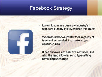 Chinese Noodles PowerPoint Templates - Slide 6