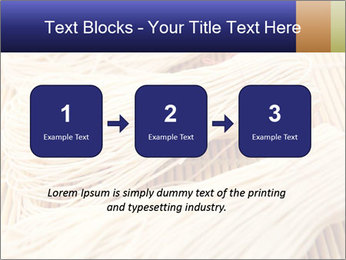 Chinese Noodles PowerPoint Template - Slide 71