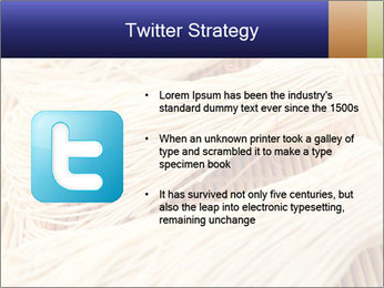 Chinese Noodles PowerPoint Templates - Slide 9