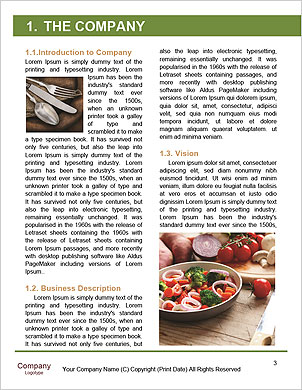 0000091160 Word Template - Page 3
