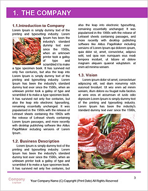 0000091163 Word Template - Page 3