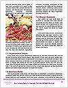 0000091163 Word Templates - Page 4