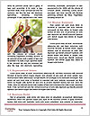 0000091166 Word Template - Page 4
