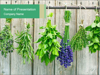 Hanging Herbs PowerPoint Template - Slide 1