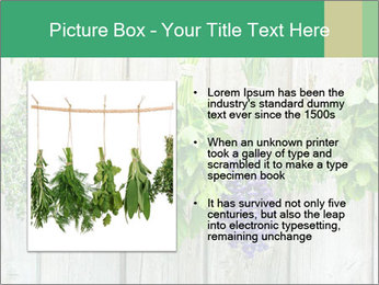 Hanging Herbs PowerPoint Template - Slide 13