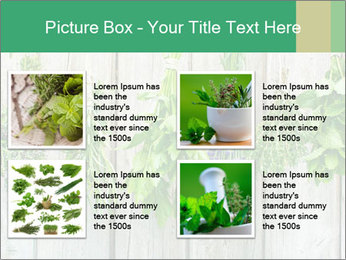 Hanging Herbs PowerPoint Template - Slide 14