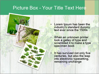 Hanging Herbs PowerPoint Template - Slide 17