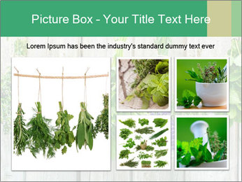 Hanging Herbs PowerPoint Template - Slide 19