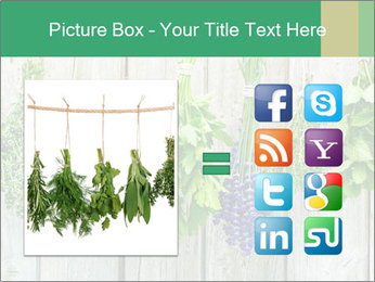 Hanging Herbs PowerPoint Template - Slide 21