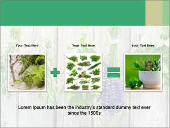 Hanging Herbs PowerPoint Template - Slide 22