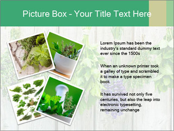 Hanging Herbs PowerPoint Template - Slide 23