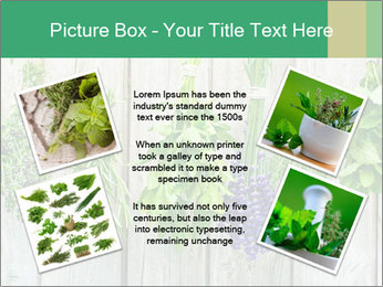 Hanging Herbs PowerPoint Template - Slide 24