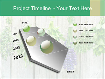 Hanging Herbs PowerPoint Template - Slide 26