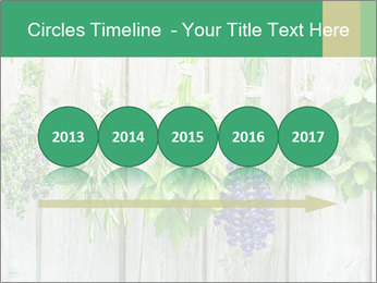 Hanging Herbs PowerPoint Template - Slide 29
