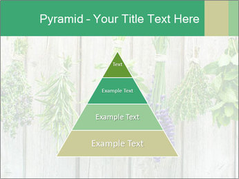 Hanging Herbs PowerPoint Template - Slide 30