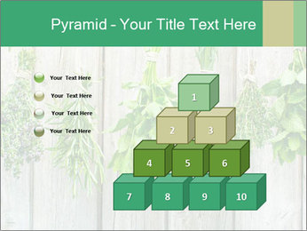 Hanging Herbs PowerPoint Template - Slide 31