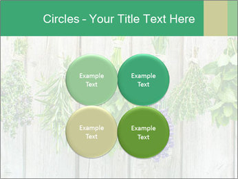 Hanging Herbs PowerPoint Template - Slide 38