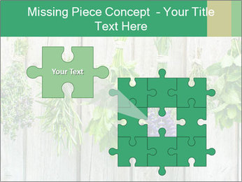 Hanging Herbs PowerPoint Template - Slide 45