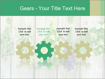 Hanging Herbs PowerPoint Template - Slide 48