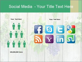 Hanging Herbs PowerPoint Template - Slide 5
