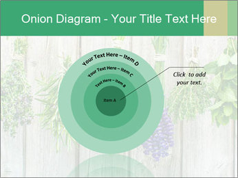 Hanging Herbs PowerPoint Template - Slide 61