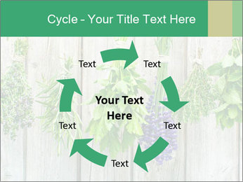 Hanging Herbs PowerPoint Template - Slide 62