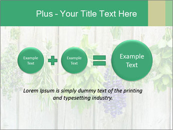 Hanging Herbs PowerPoint Template - Slide 75