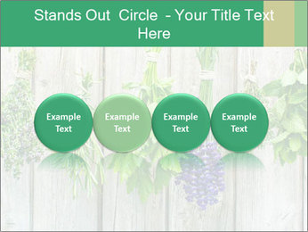 Hanging Herbs PowerPoint Template - Slide 76