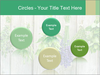 Hanging Herbs PowerPoint Template - Slide 77