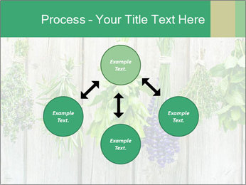 Hanging Herbs PowerPoint Template - Slide 91