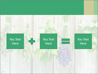 Hanging Herbs PowerPoint Template - Slide 95