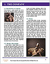 0000091179 Word Template - Page 3