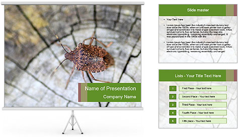 Brown Insect PowerPoint Template