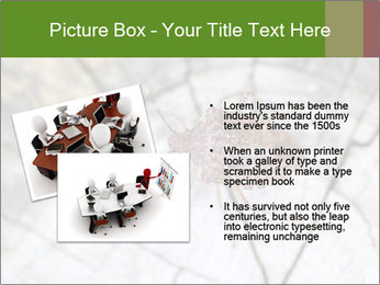 Brown Insect PowerPoint Templates - Slide 20