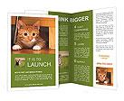 0000091182 Brochure Templates