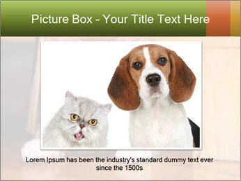 Little Red Cat PowerPoint Template - Slide 16