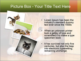 Little Red Cat PowerPoint Template - Slide 17