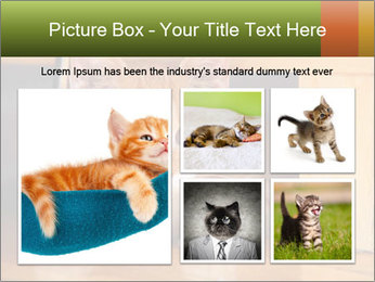 Little Red Cat PowerPoint Template - Slide 19