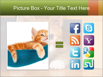 Little Red Cat PowerPoint Template - Slide 21