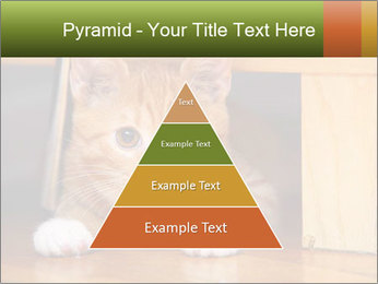 Little Red Cat PowerPoint Template - Slide 30