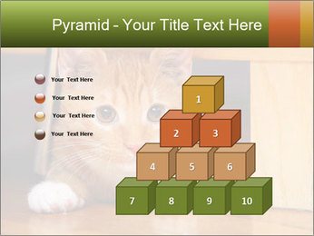 Little Red Cat PowerPoint Template - Slide 31