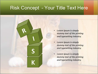 Little Red Cat PowerPoint Template - Slide 81